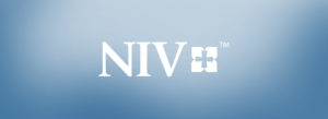 NIV Study Bibles for sale
